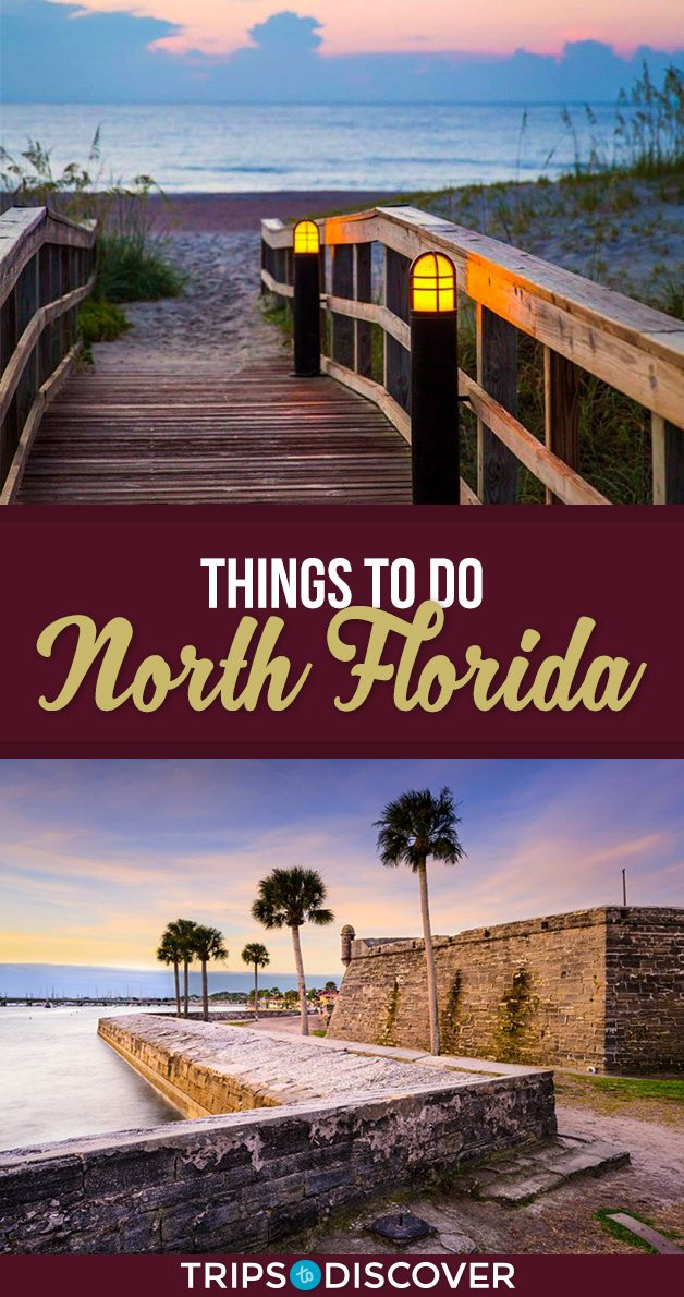 14 Things You Should Be Doing On Your Next Trip Through North Florida Trust Us Florida Vacation Florida Vacation Spots Northern Florida