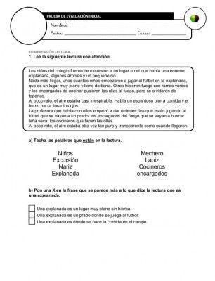 Recopilación de Evaluaciones Iniciales Segundo Ciclo Primaria + Registros