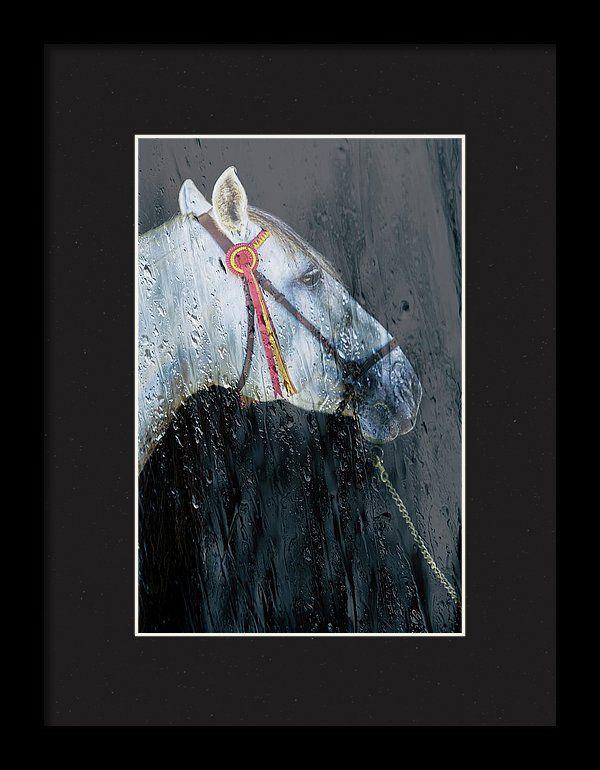 Alicegipsonphotographs Framed Print featuring the photograph Tarde De Lluvia En Andalucia by Alice Gipson