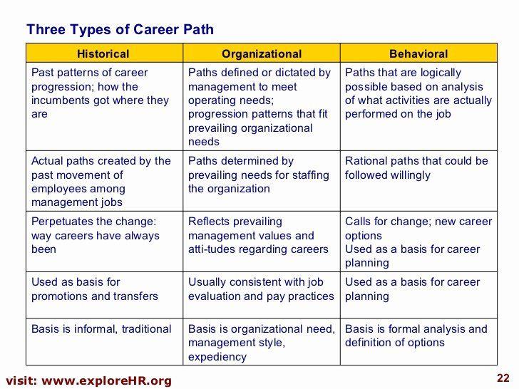 40 Career Development Plan Template In 2020 Career Development
