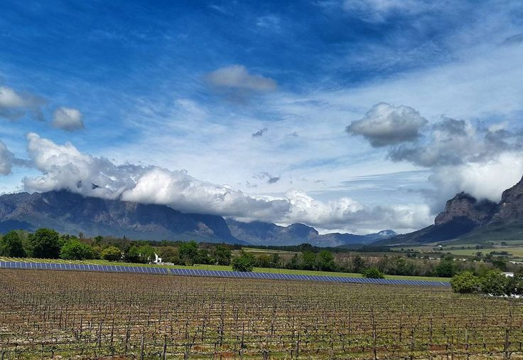 Vrede en Lust wine farm.  Uncorked wine festival in Franschhoek.