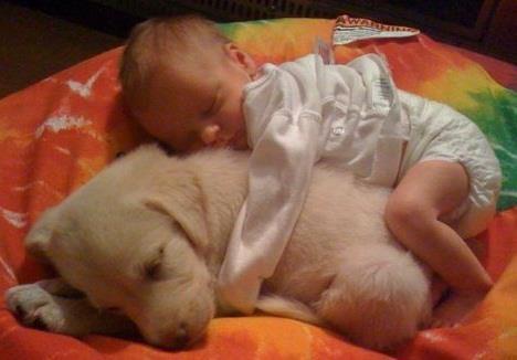 Babies & Puppies :0)