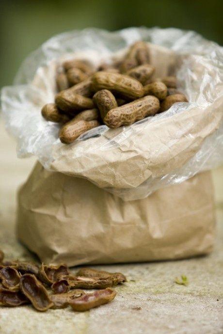 Boiled Peanuts: Southern Roadside Treasures
