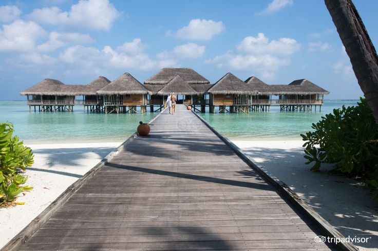 The over-the-water villas at this Lankanfushi, Maldives resort mean you can literally jump out of your room and start swimming. Can you handle any more? Well, travelers rave about the food and the service, too.