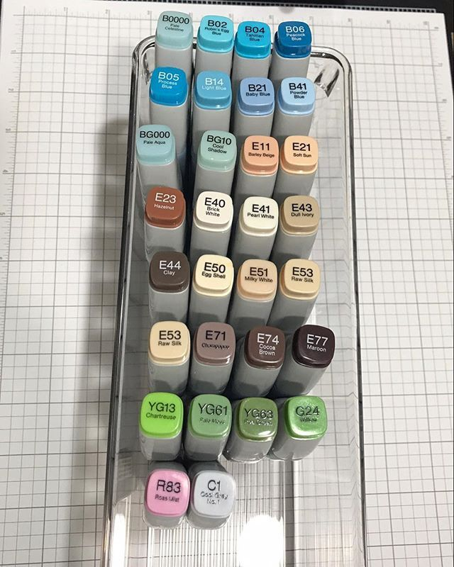 Okay crafty friends, I need some storage ideas for Copic refills. I don't have a lot of them, but my collection is growing and I am not sure how to store them. I currently have them in a small fridge bin, but I am not loving it. How do you store yours? #copic #copicstorage #copicrefill  #craftstorage