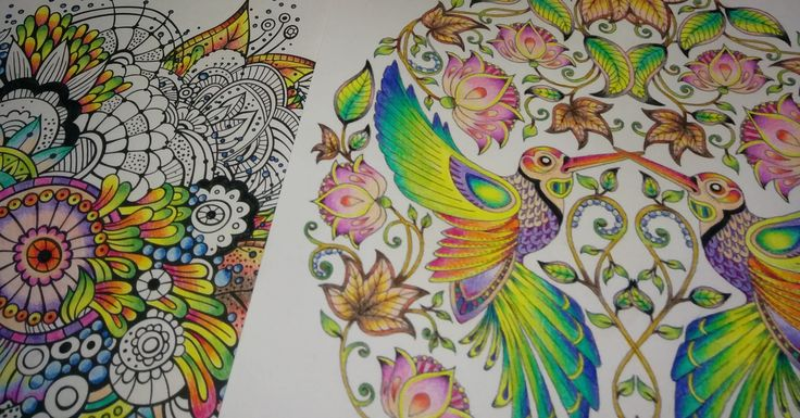 Titkos kert / adult coloring
