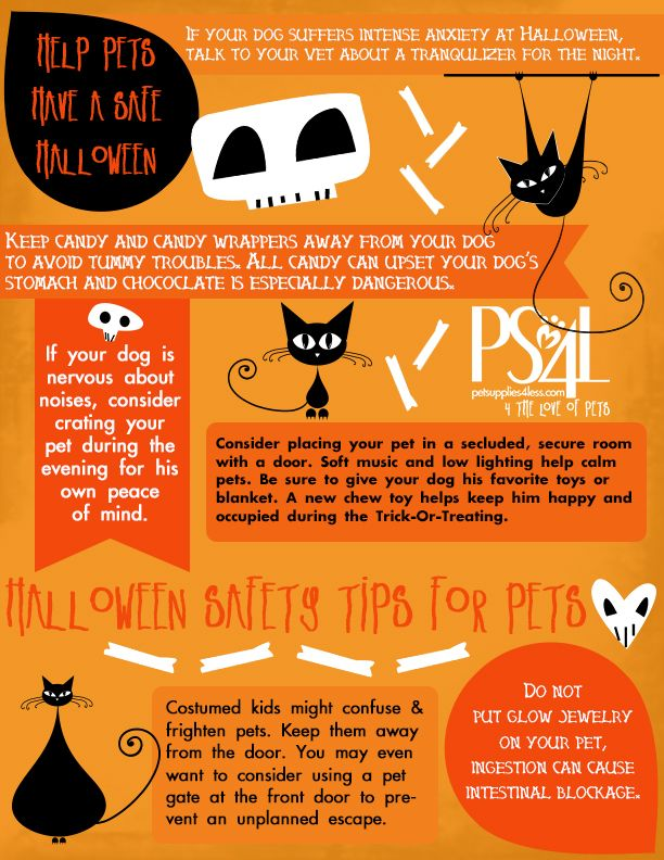33 best images about halloween safety tips on pinterest