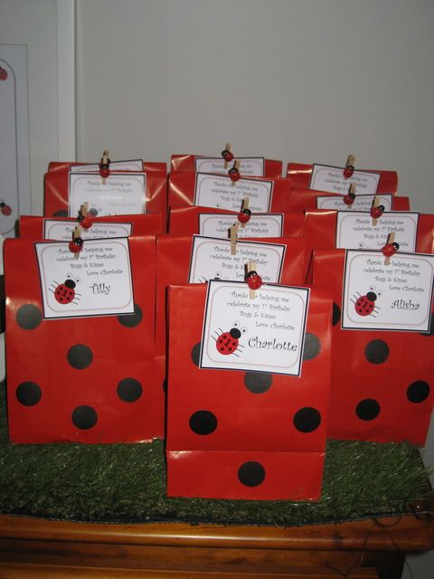 """Ladybug Garden Afternoon Tea / Birthday """"Miss Charlotte's 1st Afternoon Garden Party"""" 