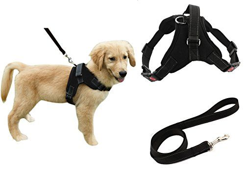 Heavy Duty Adjustable Pet Puppy Dog Safety Harness with Leash Lead Set Reflective No-Pull Breathable Padded Dog Leash Collar Chest Harness Vest with Handle for Small Medium Large Dogs Training Walking Reviews
