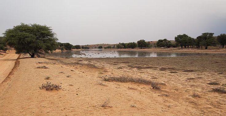 Auob River 1 Basil Dardagan (2)