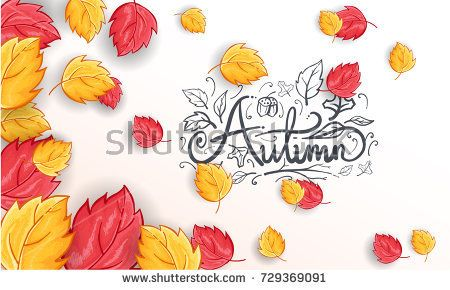 Hand Drawn Autumn calligraphy text with leaves you can use for Background, Web Banner, shopping sale poster, Postcard and Invitation card. Vector illustration eps.10