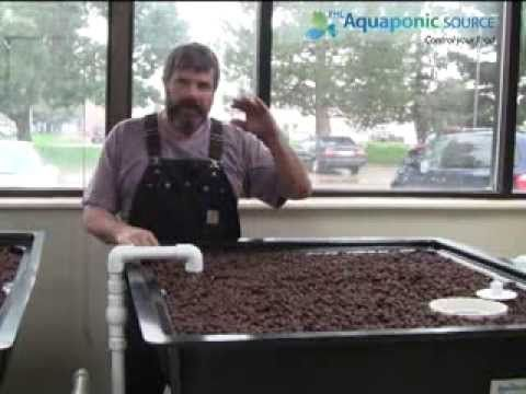 Robbie the Plumber of The Aquaponic Source teaches you how to tune/balance your aquaponics bell siphon. Check out this link for aquaponics supplies: http://www.theaquaponicstore.com/AquaParts-Bell-Siphons-s/248.htm