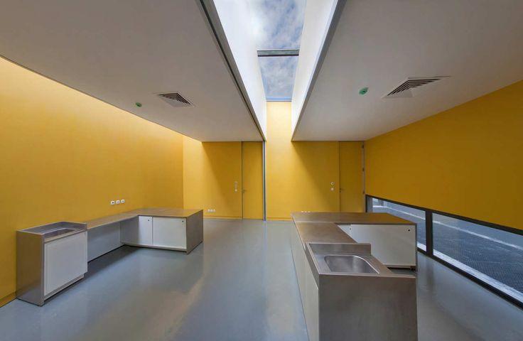 Gallery - Veterinary Clinic / Posto 9 - 16