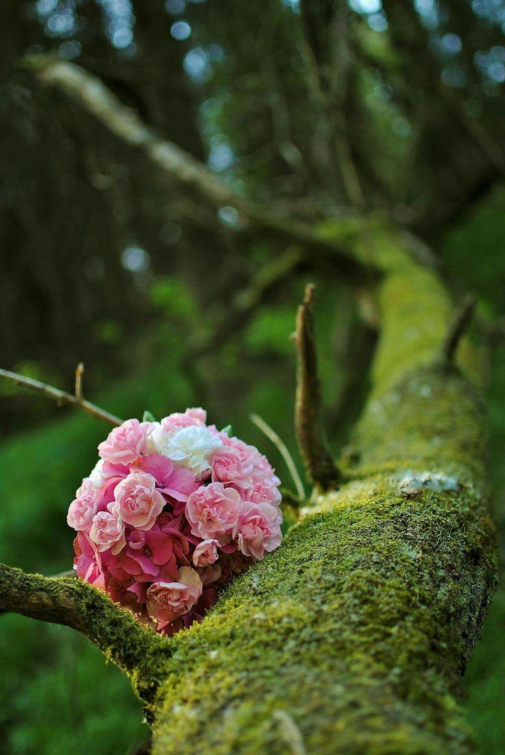 #wedding #bouquet #pink #dianthus #hydrangea #forest