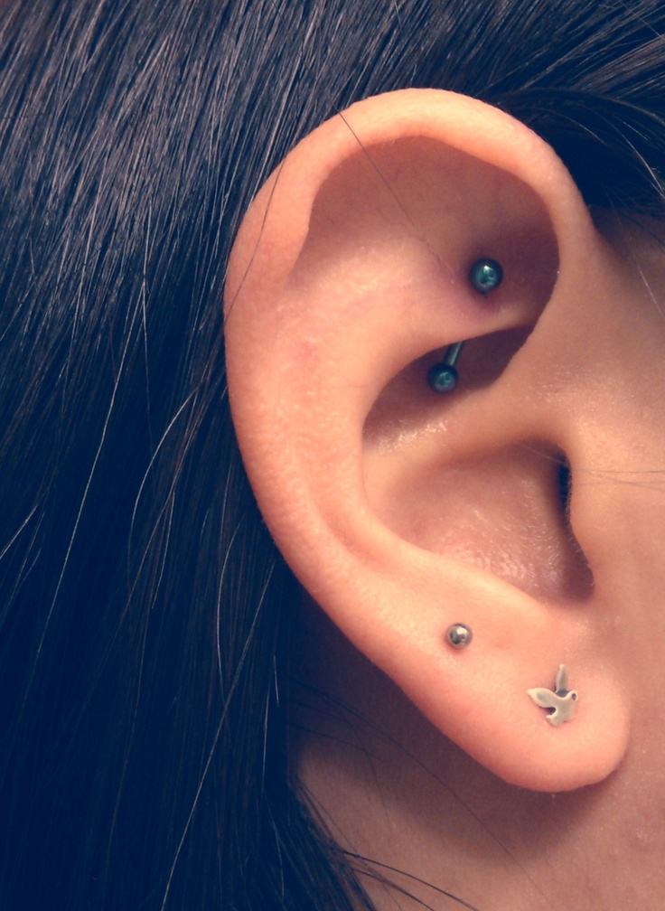 17 Best images about Ear Piercings on Pinterest ...