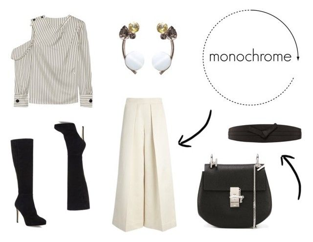 monochrome by danesmit on Polyvore featuring Monse, Joseph, Jimmy Choo, Chloé, Marni and Linea Pelle