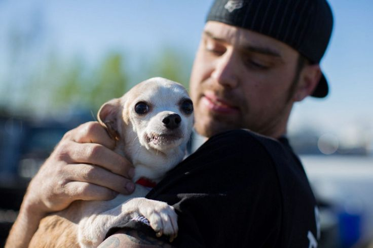 Pet lovers take care of animals that were left in Fort Murray. Bryan Jones holds onto a dog he saved from the raging wildfires.
