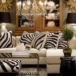 love the zebra pillows