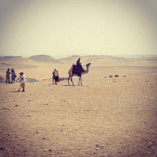 Bedouins in the desert, Egypt | Flickr – Condivisione di foto!