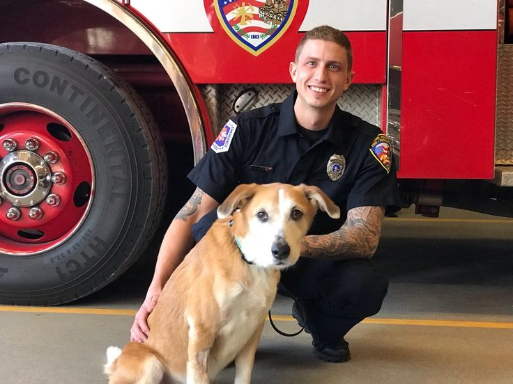 Thanks to the quick thinking on two maintenance employees at a nursing home in Crown Point Indiana, a mixed Labrador Retriever named Chiquita was rescued by a...