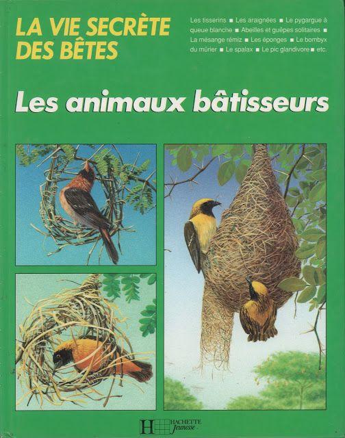 Michel Cuisin, Les animaux bâtisseurs (1991)