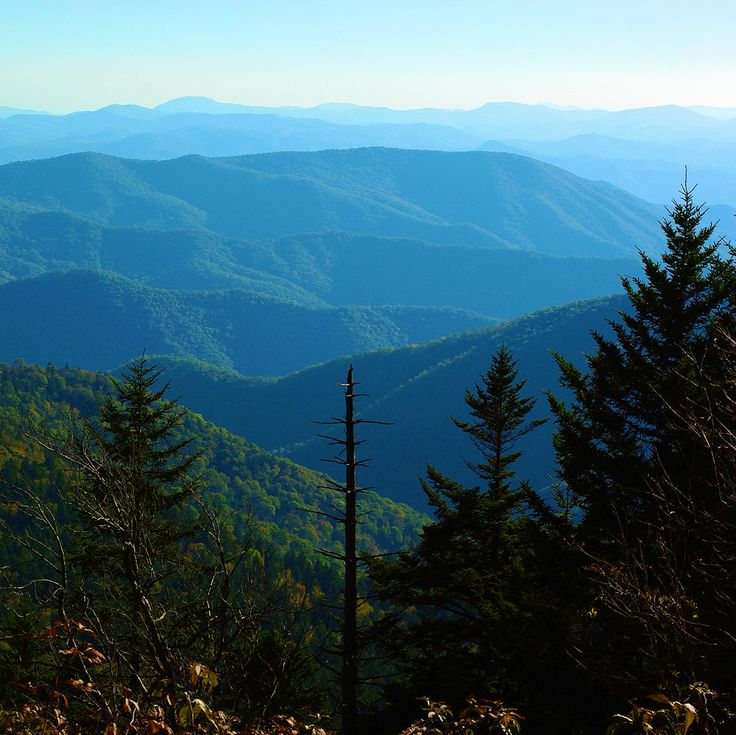 Best Places To Hike Boone Nc: 17 Best Images About Blue Ridge Parkway On Pinterest