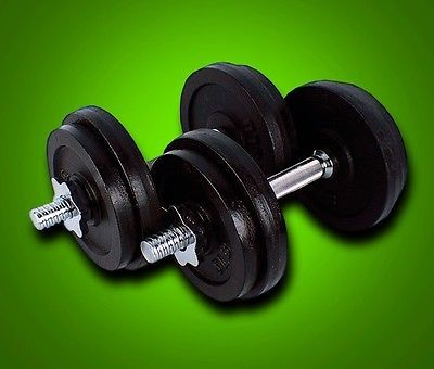 New 65 Lbs Painted Cast Iron Adjustable Weight Dumbbells Set Kit 32.5LbsX2PCS