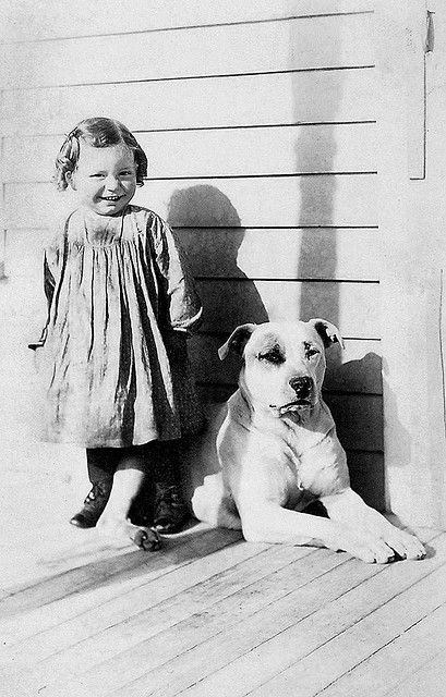 vintage pitbull ?mabey? but whatever the breed it's a family dog for sure.whith it's happy dirty real kid standing by.Tiny slice of a happy day rembered.
