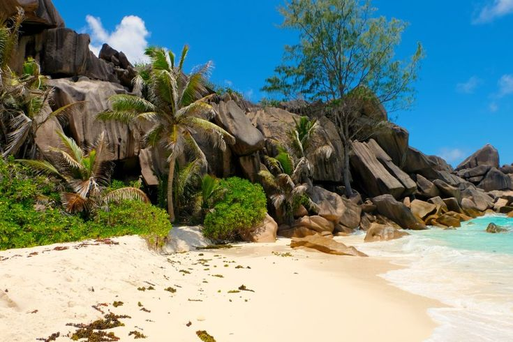 Secluded Beach La Digue - Find out how to best experience La Digue and how to enjoy an amazing honeymoon in the Seychelles.  #honeymoon #beaches #beachlife #seychelles