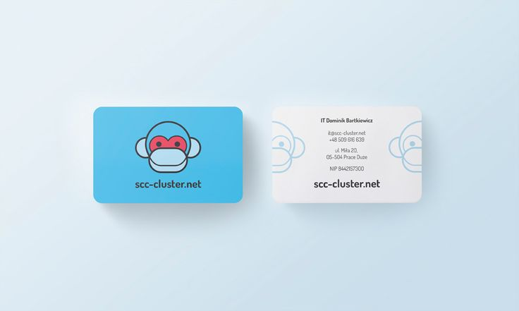 SCC-Cluster - business card - by Lotne Studio