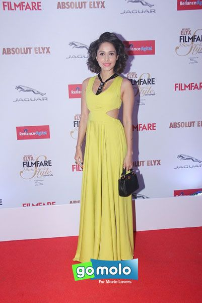Nushrat Bharucha at Filmfare Glamour & Style Awards 2015 in Mumbai