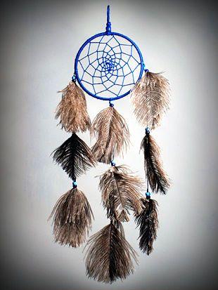 Mitologia dei Nativi Americani - Wikipedia