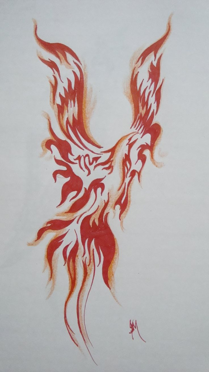 Colorful phoenix tattoo designs - Designs Of Phoenix Tattoos For Men Admire Because Early Models Of A Phoenix Had The Body Of A Man And Expandable Wings Of The Phoenix