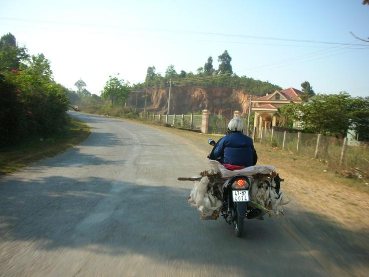 Somewhere in Vietnam...