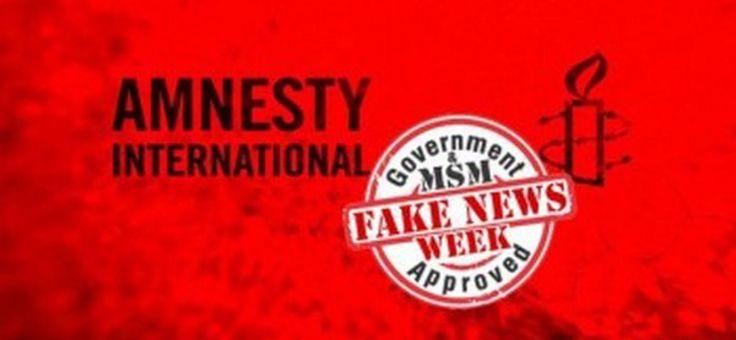 Amnesty international attise la guerre en Syrie