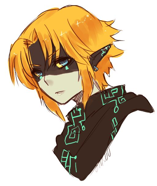 A Twili version of Link.  Eeeeeek, So awesome!!!! :D (if he was human form not wolf)