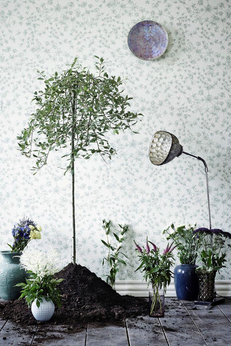 17 best images about fiona botanic garden on pinterest for Botanical garden designs