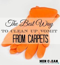 How To Clean Cat Vomit Stains Remove Puke Stains Easily