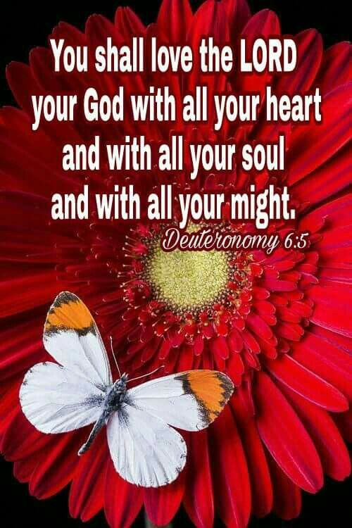 Heart soul and might!!! With all that's in u LOVE the Lord!!!