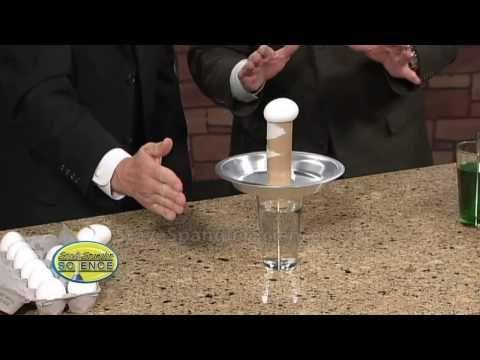 Egg Drop Inertia Challenge - Cool Science Trick