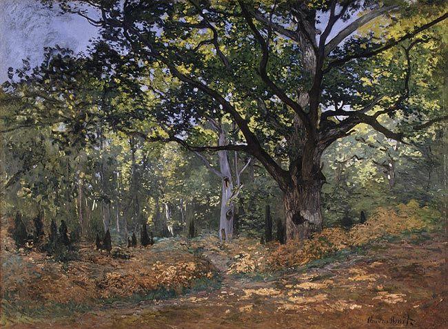Claude Monet: The Bodmer Oak, Fontainebleau Forest (64.210)