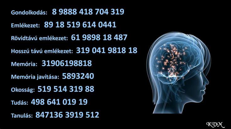 Gondolkodás, memória, emlékezet javítása