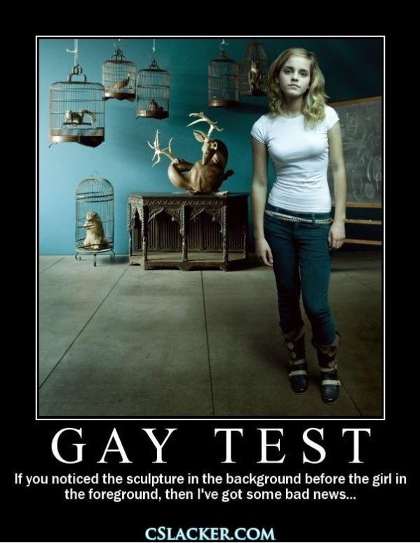 gayporno hugetits