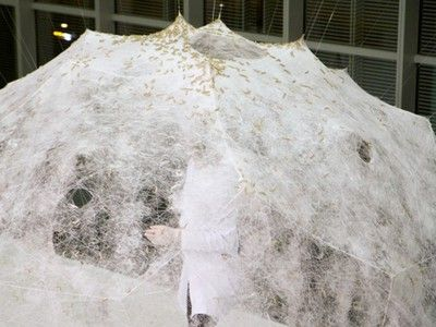 Silk Pavilion from MIT's Media Lab is a beautiful example of biomimicry