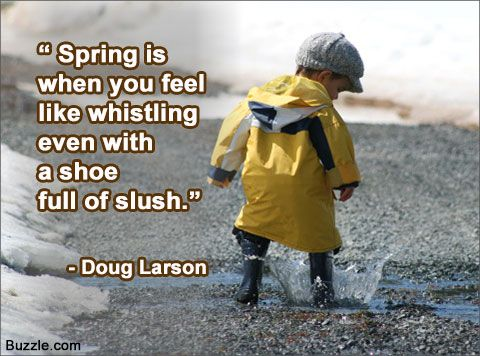 Funny and Cute Spring Quotes That Will Make You Smile All Day Funny and Cute Spring Quotes
