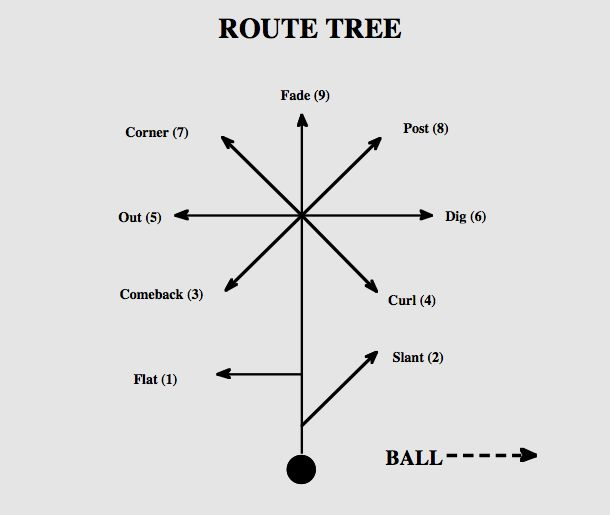 NFL 101: Breaking Down the Basics of the Route Tree | Bleacher Report