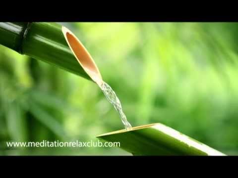 Sonidos de la Naturaleza | Mùsica Relajante especial para Meditar, Sanar...