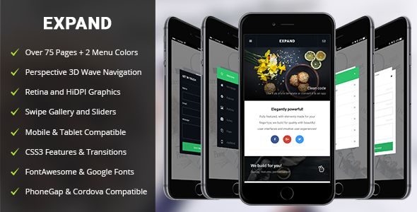 Expand | Mobile & Tablet Responsive Template