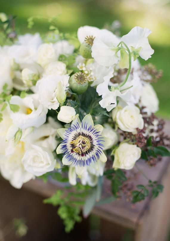 726 best Flowers: WHITE images on Pinterest | Beautiful flowers ...