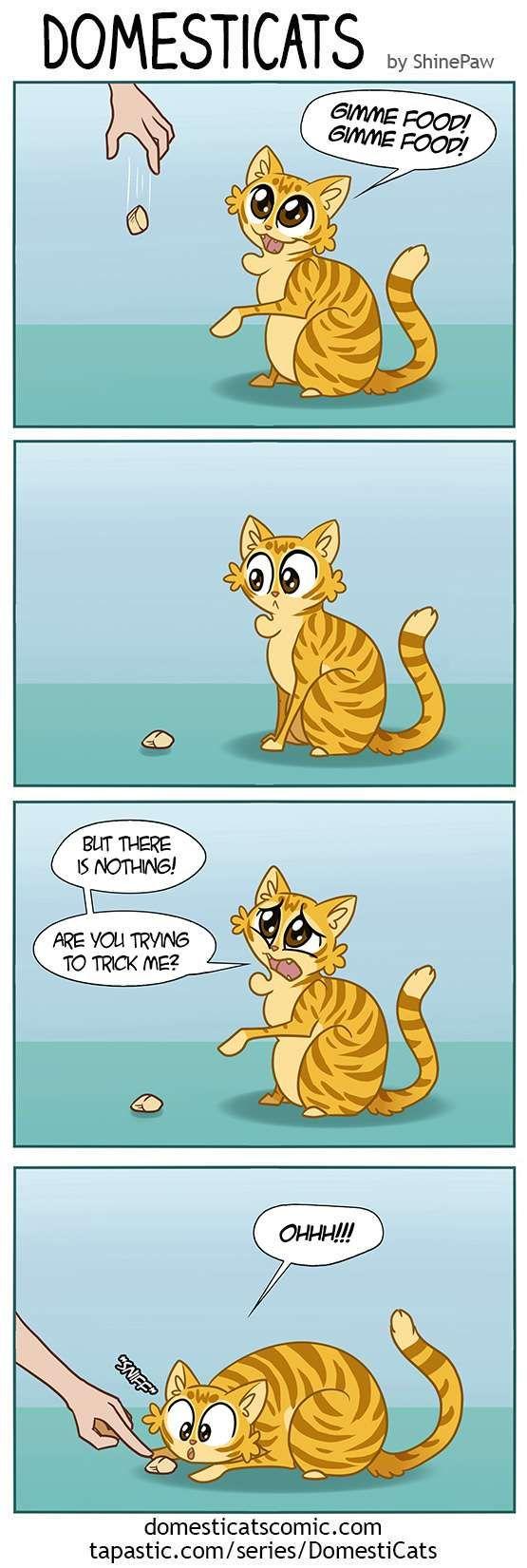 DomestiCats :: Cat sight | Tapastic Comics - image 1